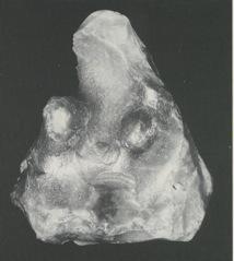 Flintstatuette