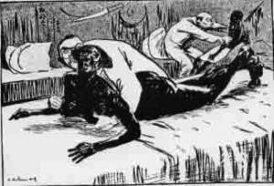 Vergewalting der Wilden